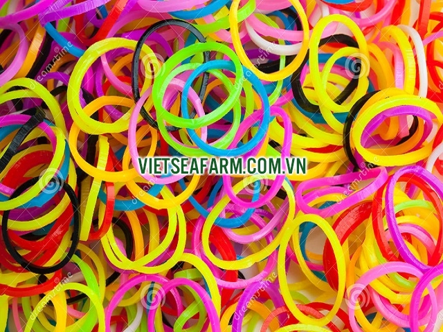 Round Rubber Bands